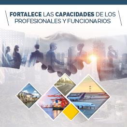 Programa Avanzado en Estructuración Financiera de Proyectos bajo la modalidad de Asociación Público Privada (APP)