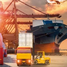 Especialización en Gestión de Comercio Exterior y Aduanas