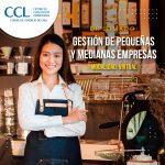 Diplomado Virtual en Gestión de Pequeñas y Medianas Empresas