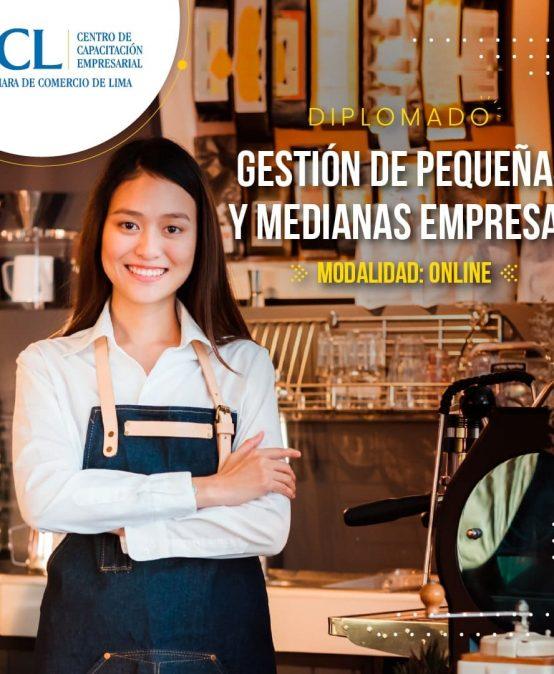 Diplomado en Gestión de Pequeñas y Medianas Empresas