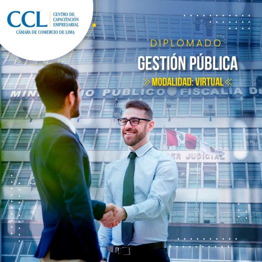 Diplomado Virtual en Gestión Pública