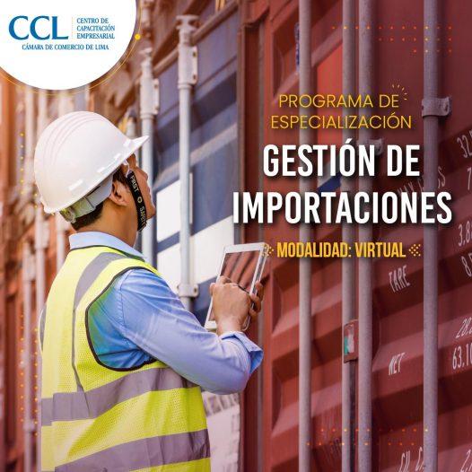 Especialización VIRTUAL en Gestión de Importaciones