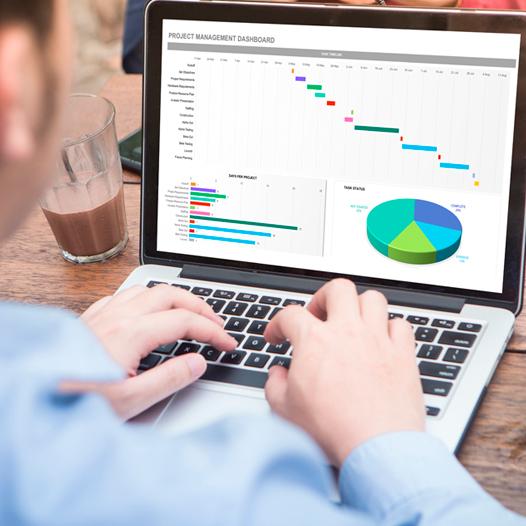 Integral en Ms Excel Aplicado a la Gestión