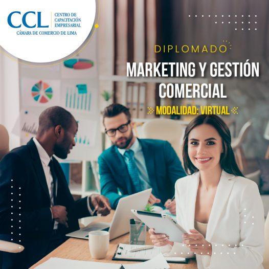 Diplomado Virtual en Marketing y Gestión Comercional